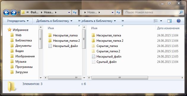 Как показать скрытые папки и файлы в Windows
