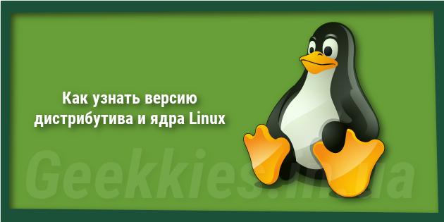 Как узнать версию дистрибутива и ядра Linux