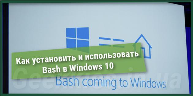 Как установить и использовать Bash в Windows 10